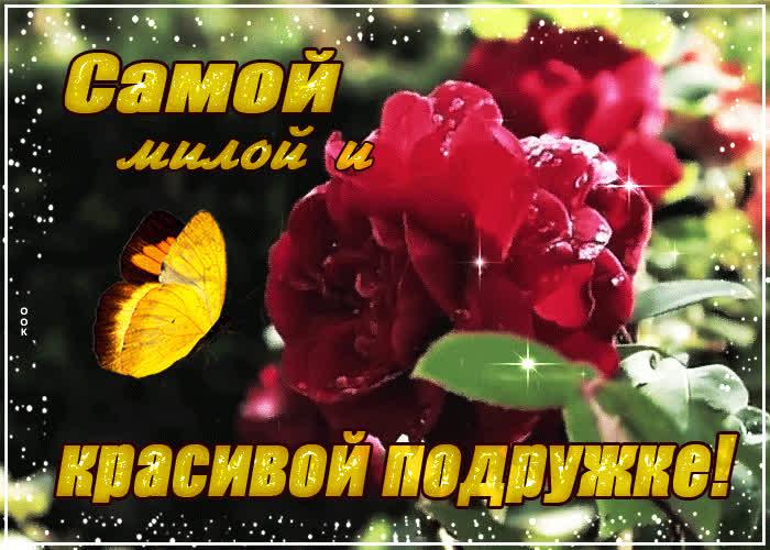 Картинка этот цветок тебе золотце