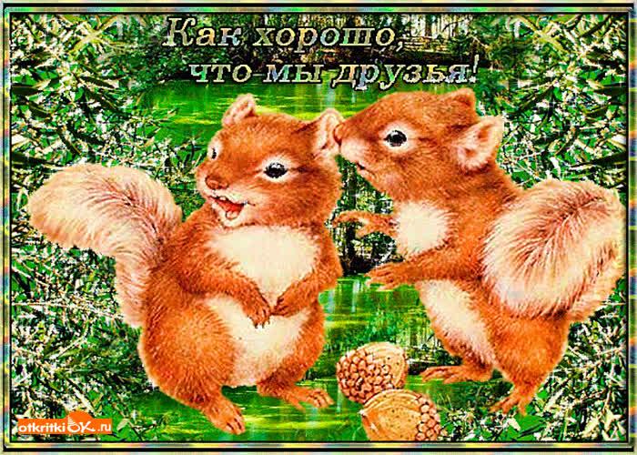Как хорошо что мы друзья открытки, картинки открытка днем