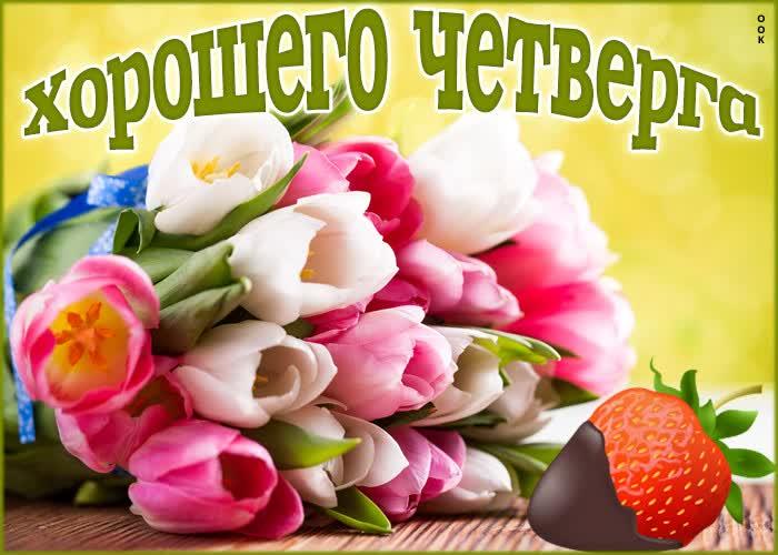 Картинка картинка четверг с тюльпанами