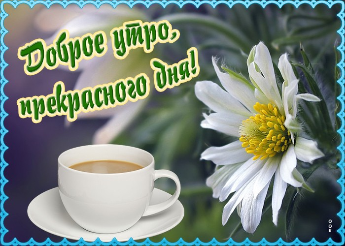 Картинка картинка доброе утро и прекрасного дня