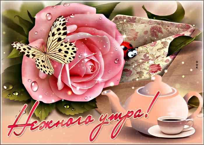 Открытка картинка доброе утро розовая роза