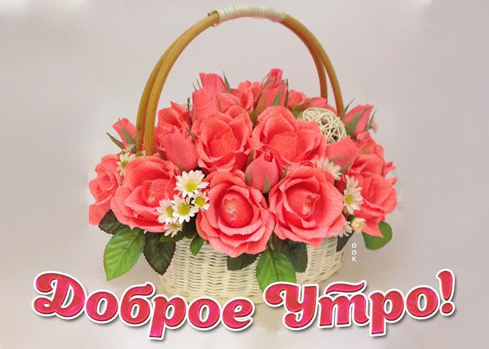 Картинка картинка доброе утро с корзиной роз