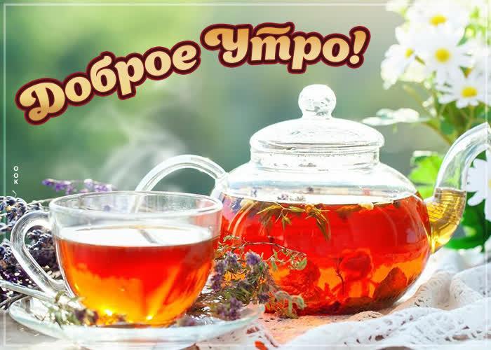 Открытка картинка доброе утро с травяным чаем