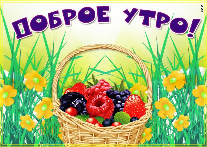 Картинка картинка доброе утро с ягодами