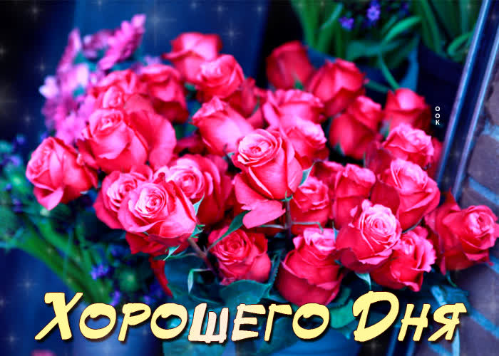 Картинка картинка хорошего дня с розами