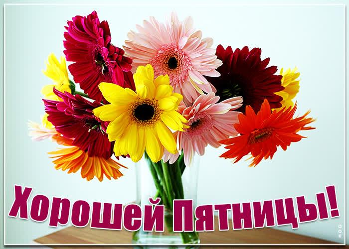 Картинка картинка хорошей пятницы с яркими цветами