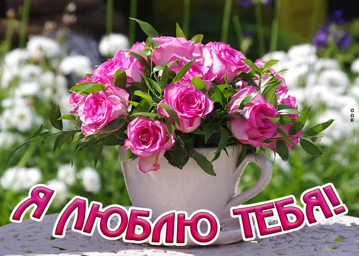 Картинка картинка люблю с розовыми розами
