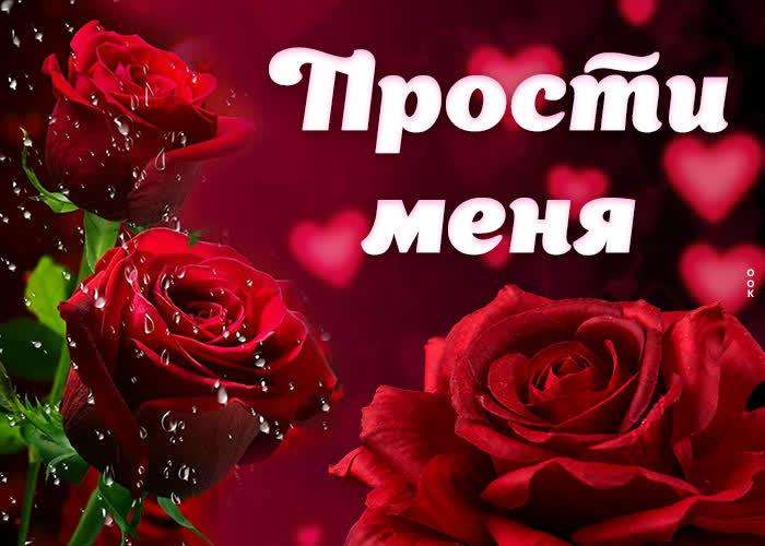 Открытка картинка прости с розами