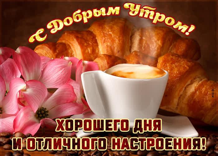 Открытка картинка с добрым утром хорошего дня