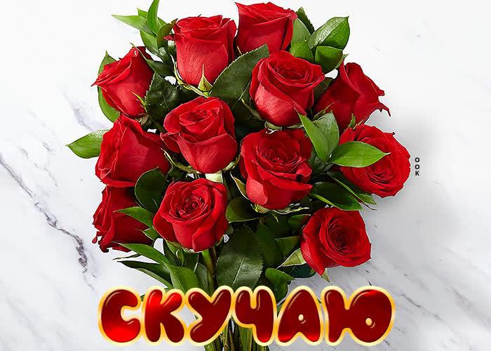 Открытка картинка скучаю с алыми розами