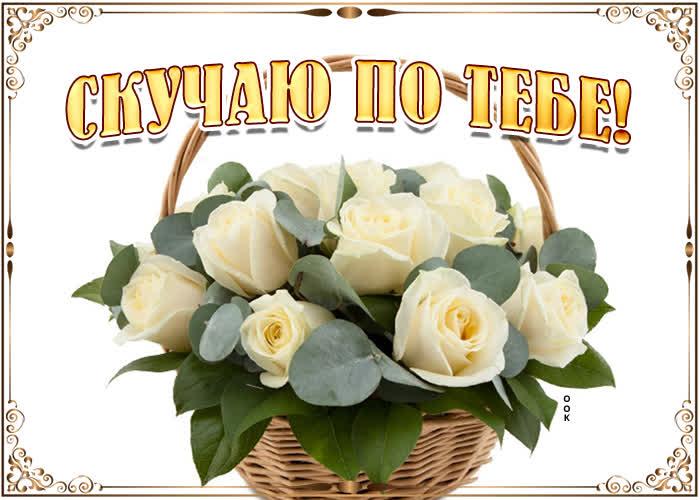 Открытка картинка скучаю с розами