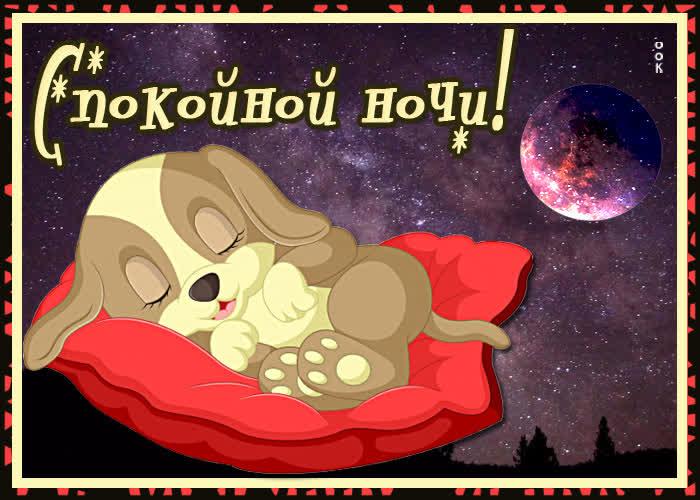 Картинка картинка спокойной ночи с собачкой