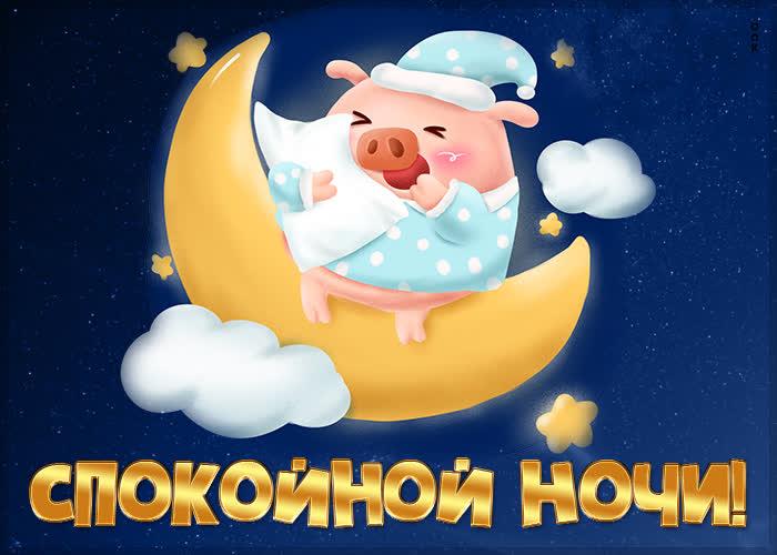 Открытка картинка спокойной ночи со свинкой