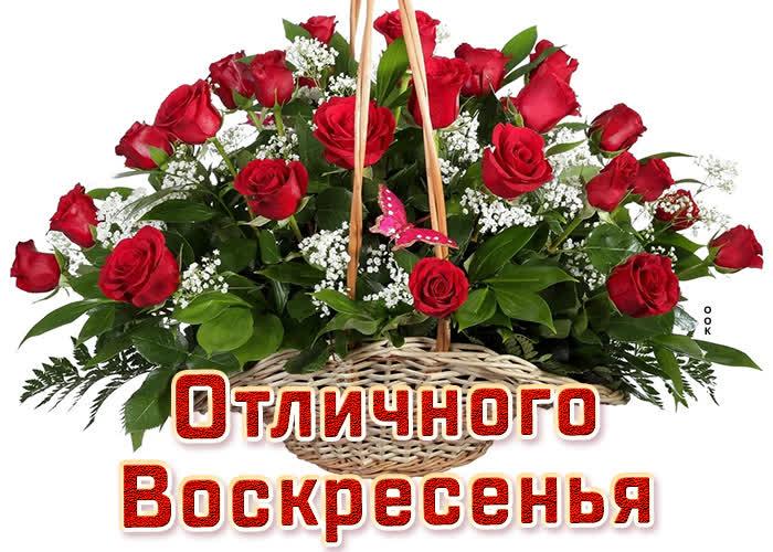 Открытка картинка воскресенье с розами