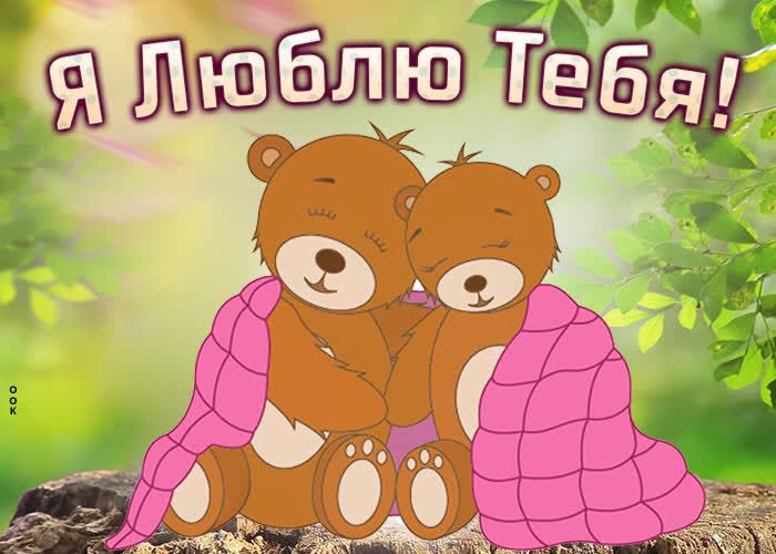 Картинка картинка я люблю тебя с медведями