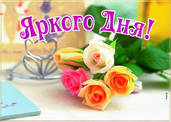 Картинка картинка яркого дня с розами