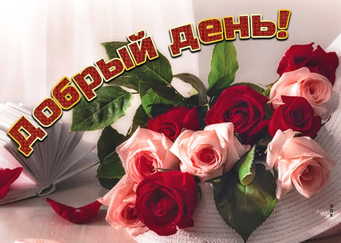 Картинка красивая картинка добрый день с букетом роз