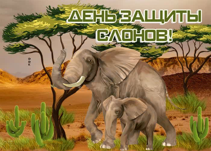 Картинка красивая картинка всемирный день защиты слонов