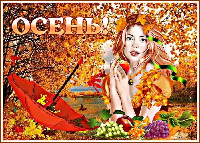 Открытка красивая открытка хорошей осени