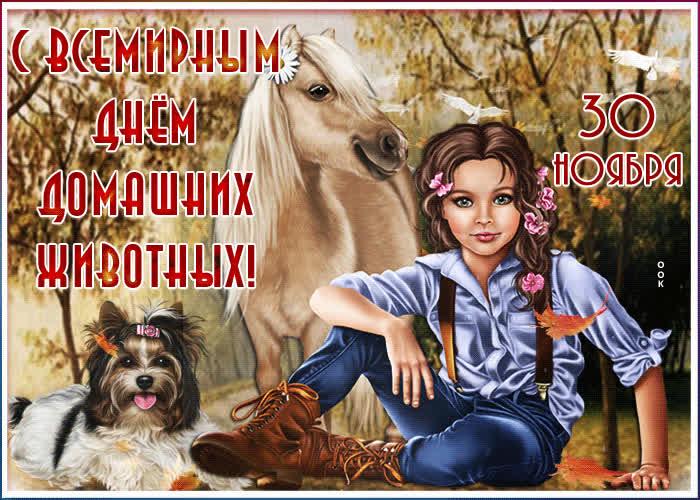 редко встречается открытки день домашних животных 30 ноября первую