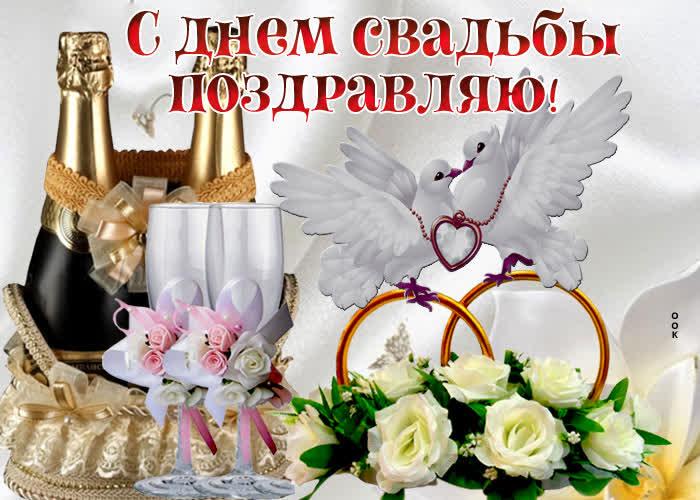 pozdravleniya-s-svadboj-krasivie-otkritki foto 19