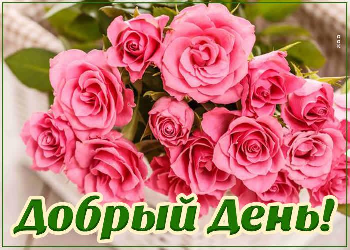 Картинка милая картинка добрый день с розами