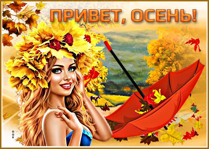 Картинка милая картинка привет, осень