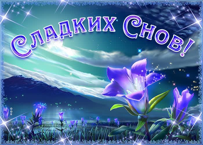 Картинка нежная открытка сладких снов
