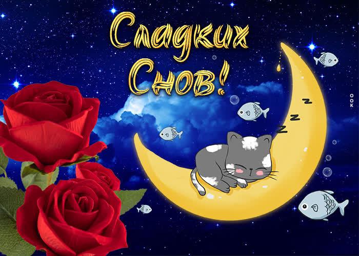 Картинка очаровательная картинка спокойной ночи