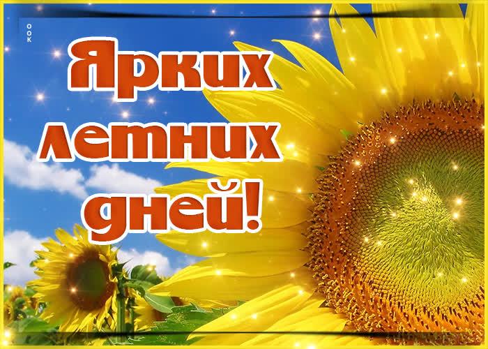 Картинка оригинальная открытка с летом