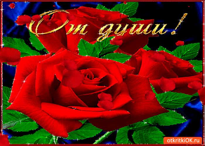 Картинка от души эти живые розы