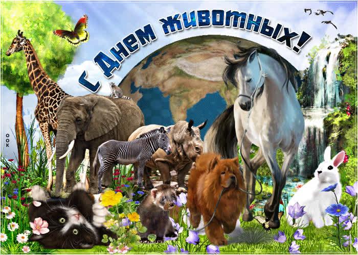 открытка день животных просто красивые