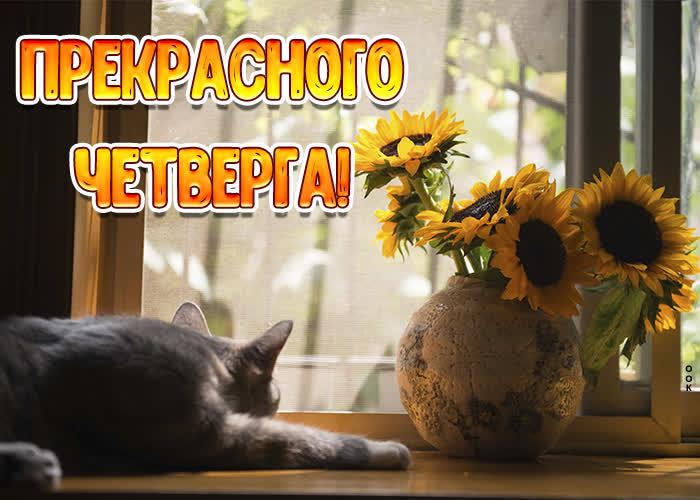 Картинка открытка прекрасного четверга с цветами