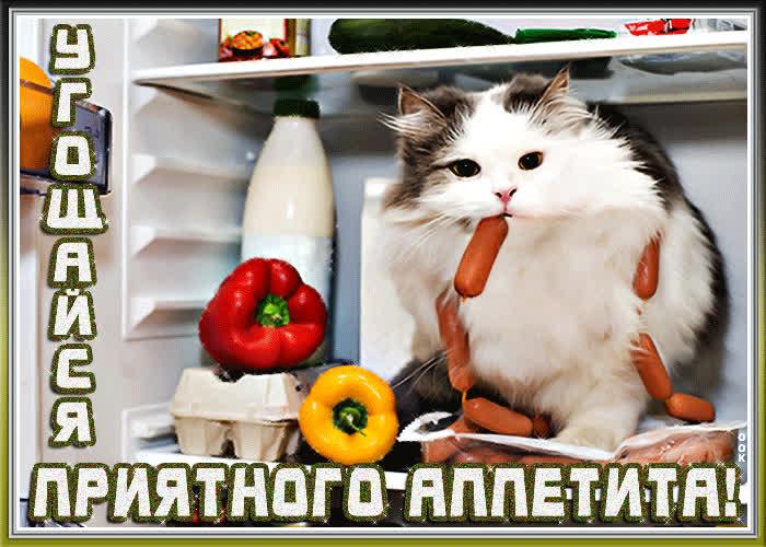 открытки приятного аппетита прикольные открытки приятного аппетита выезда заезда только