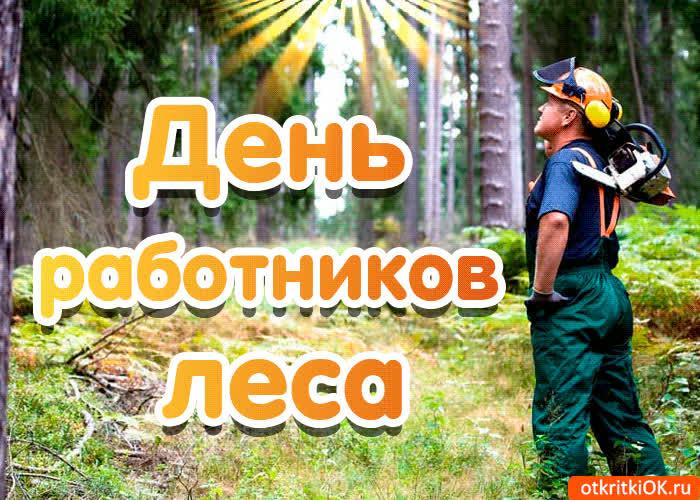 Картинки с днем работников леса мужу, картинки марков