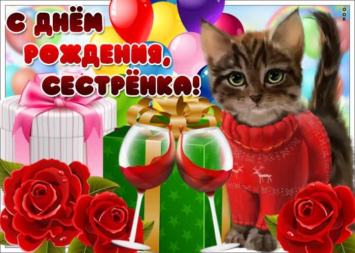 Картинка открытка с днем рождения сестре с котиком