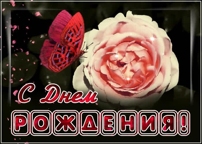 Открытка открытка с днем рождения женщине с розой и бабочкой