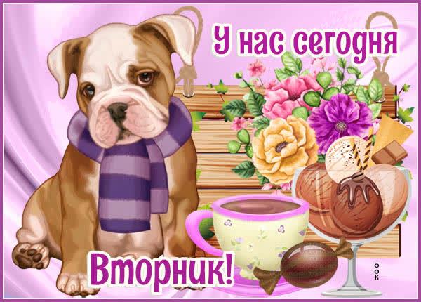 Открытка открытка с вторником с собачкой