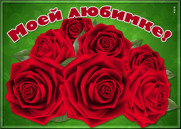 Открытка открытка великолепные розы