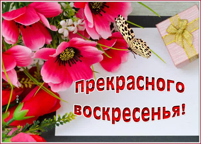 Картинка открытка воскресенье с цветами