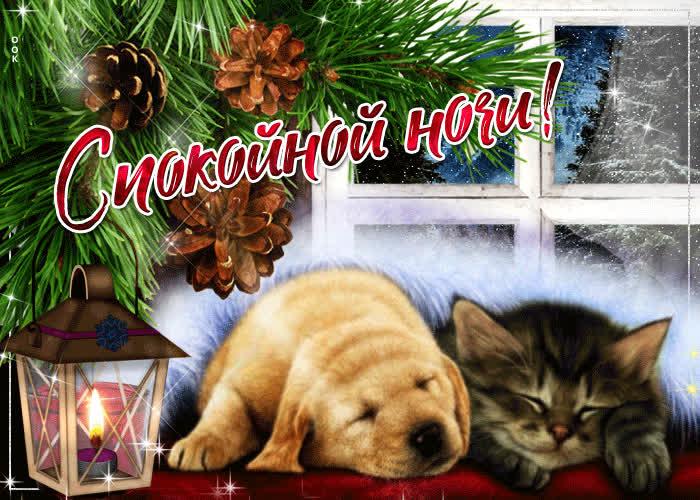 Картинки спокойной ночи зима с пожеланиями