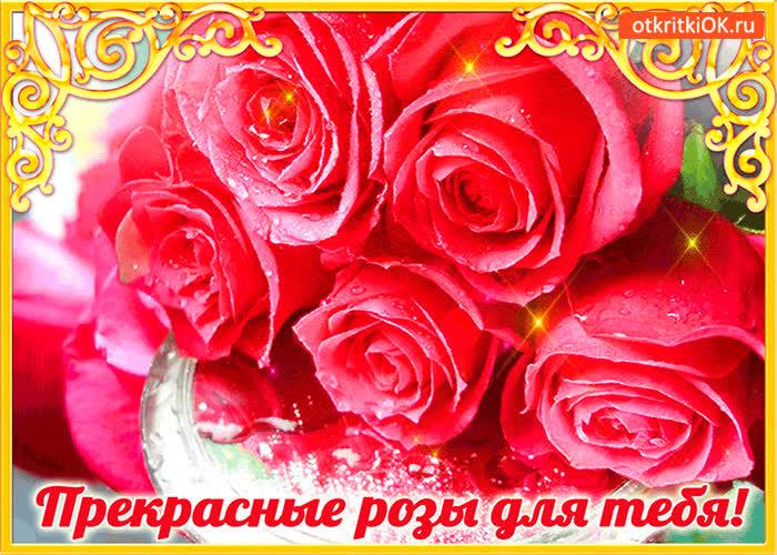 Картинка прекрасные розы только для тебя