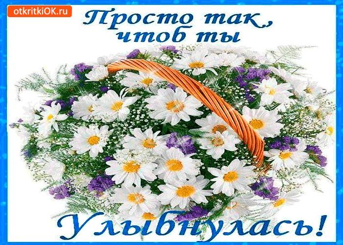 Открытки цветочки просто так