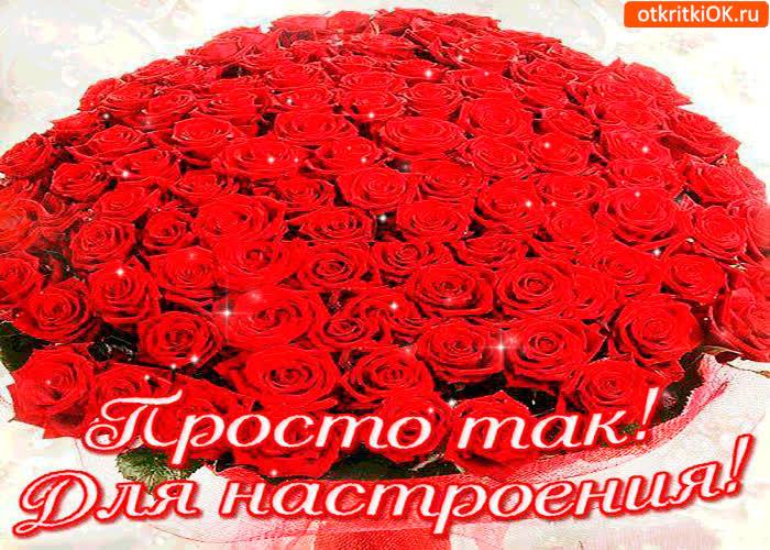 Красивые цветы открытка женщине просто так