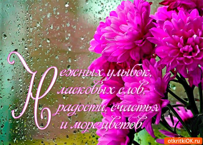 Радости на весь день открытка поздравление