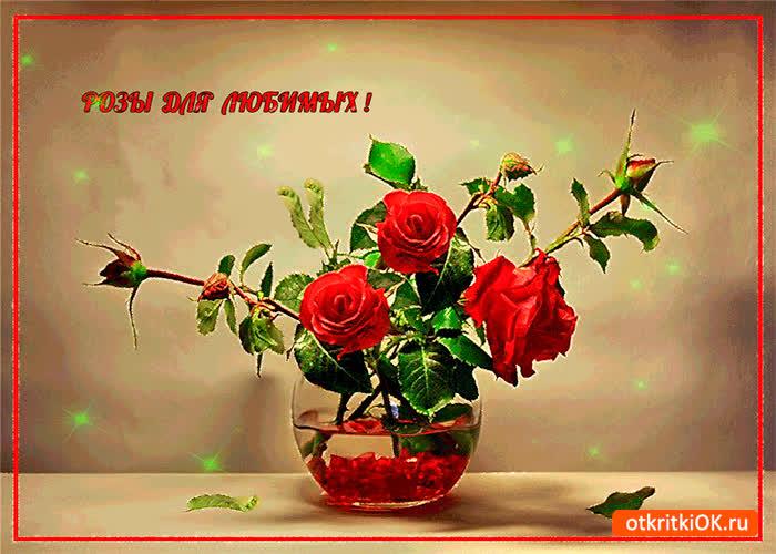 Картинка розы для любимых друзей