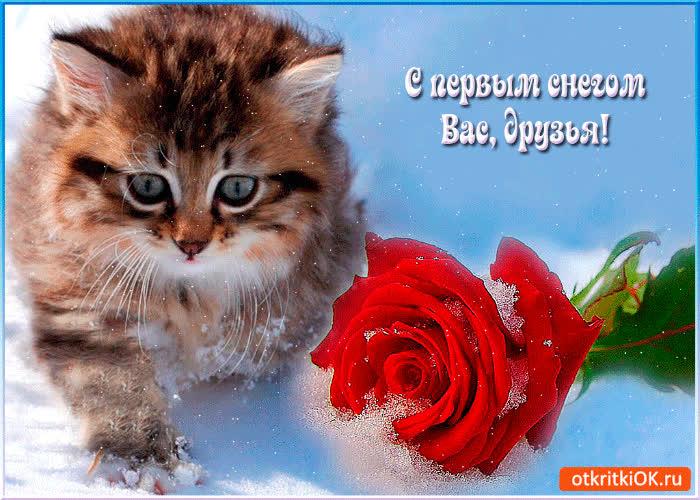 блестящие открытки с первым снегом твой день