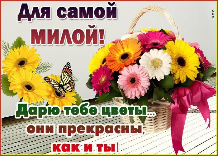 Открытка красивая открытка с цветами