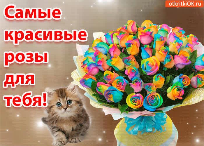 Картинка самые красивые розы для тебя!