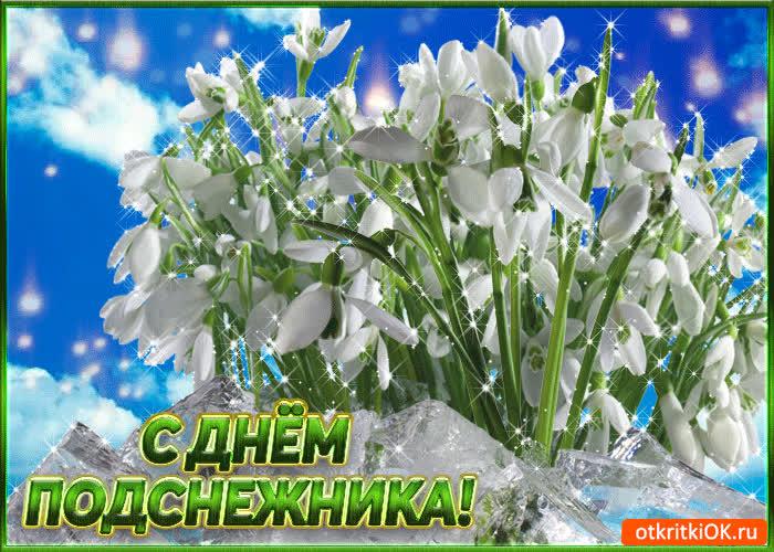 крупный день подснежника в россии открытка прежде